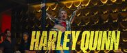 Harley Quinn Trailer Name Flash