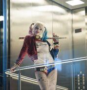 Harley in Elevator