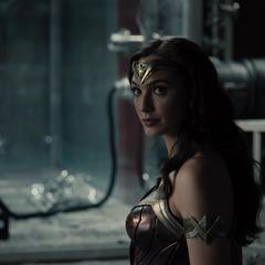 Diana sostiene su escudo.