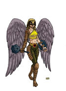Hawkgirl Redesign by 2depaus