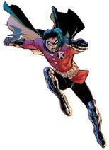 Robin DG