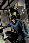 Nightwing06