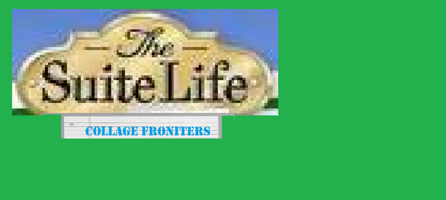 File:The Suite Life Collage Froniters.png