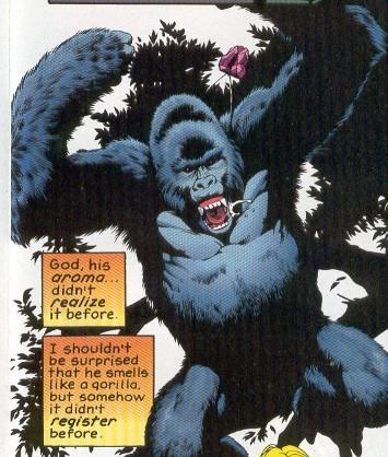 Gorilla-grodd super