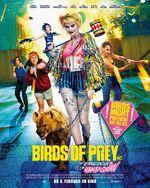 Birds of Prey deutsches Kinoposter 3