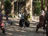 Shogun (Legends of Tomorrow)