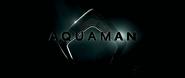 Aquaman Eventlogo