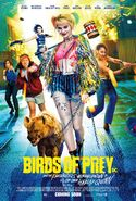 Birds of Prey Kinoposter 3
