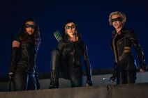 A - Green Arrow and the Canaries