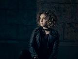 Selina Kyle (Hellerverse)