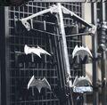 Bat-weaponry1.jpeg