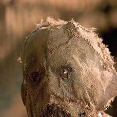 Cillian Murphy as Scarecrow.