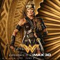Wonder Woman IMAX character poster 3.jpg
