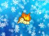 Rod the Shiny Cyndaquil