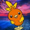 Brandon the Torchic