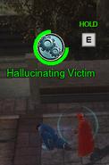 Hallucinating Victim 2