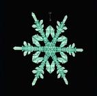 Crystallized Snowflake