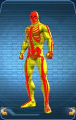 FullSkeleton