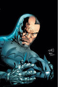 Dc-universe future Batman