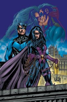 1110871-nightwing huntress tpb2