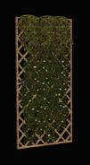Vernal Wall Trellis