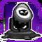 BI Owl-Signal Purple