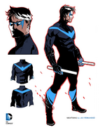 ConceptArt-NightwingRebirth1