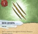 Rock Catching
