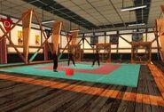 SA Cobra Martial Arts Innenraum 2