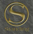 Standing-Vice-Point-Logo 2, VC