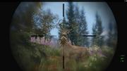Hunting gtav