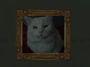 Katze1