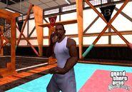 SA Cobra Martial Arts Innenraum