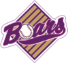 Boars logo erster screen