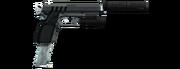 W PI Pistol Full