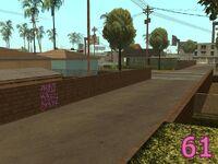 Front-Yard-Ballas 061