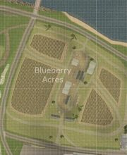 Blueberry Acres