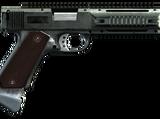 AP-Pistole (V)