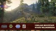 Chiliad-Mountain-Naturschutzgebiet-Ansichtskarte