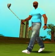 Golfschläger, Leaf Links Golfclub, VCS