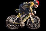 Cycling-GTA V
