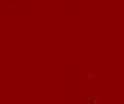 Cerveza-Barracho-Logo