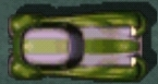 Darkstripedrumbler2