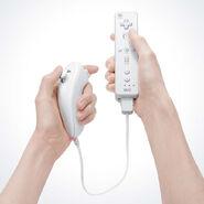 Nunchuk und Wii-FB Hand