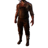 TR Body01 CV01