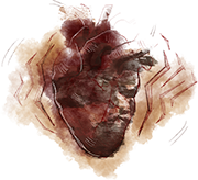 Dbd-journal-heartbeat