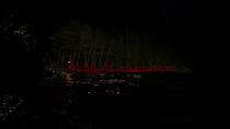 Dead of Summer logo titlecard générique épisode 1x01