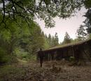 Cabane de Holyoke