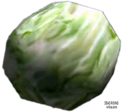 Dead rising Cabbage