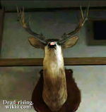 Dead rising deer in north plaza hardware PP